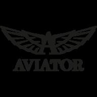 aviatorwatch.swiss